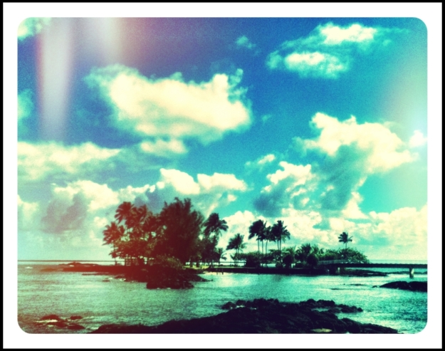 coconut island, hilo, hawaii