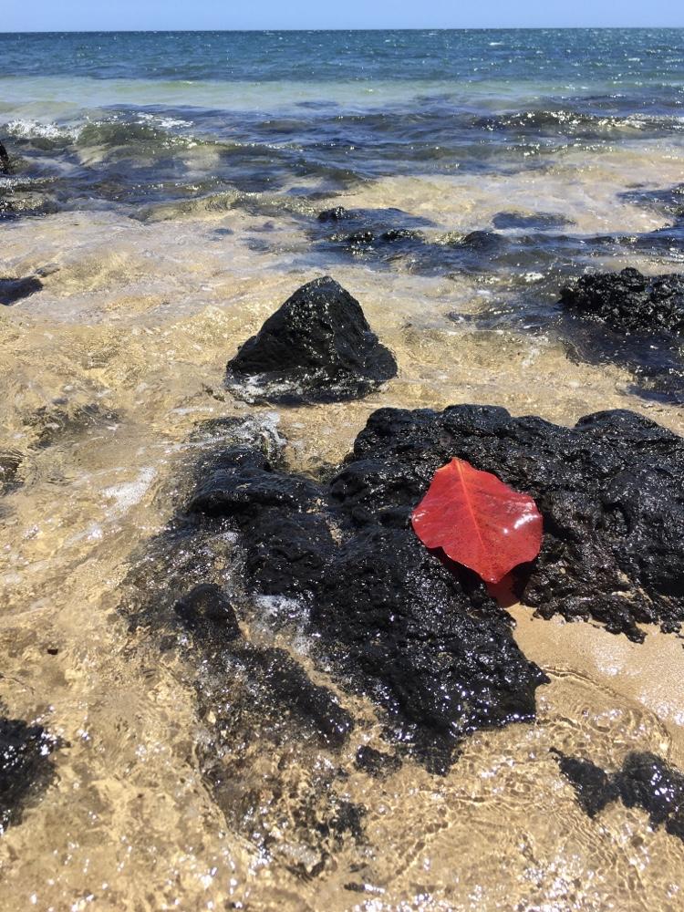 Big Island, Hawaii, photo by David Elias