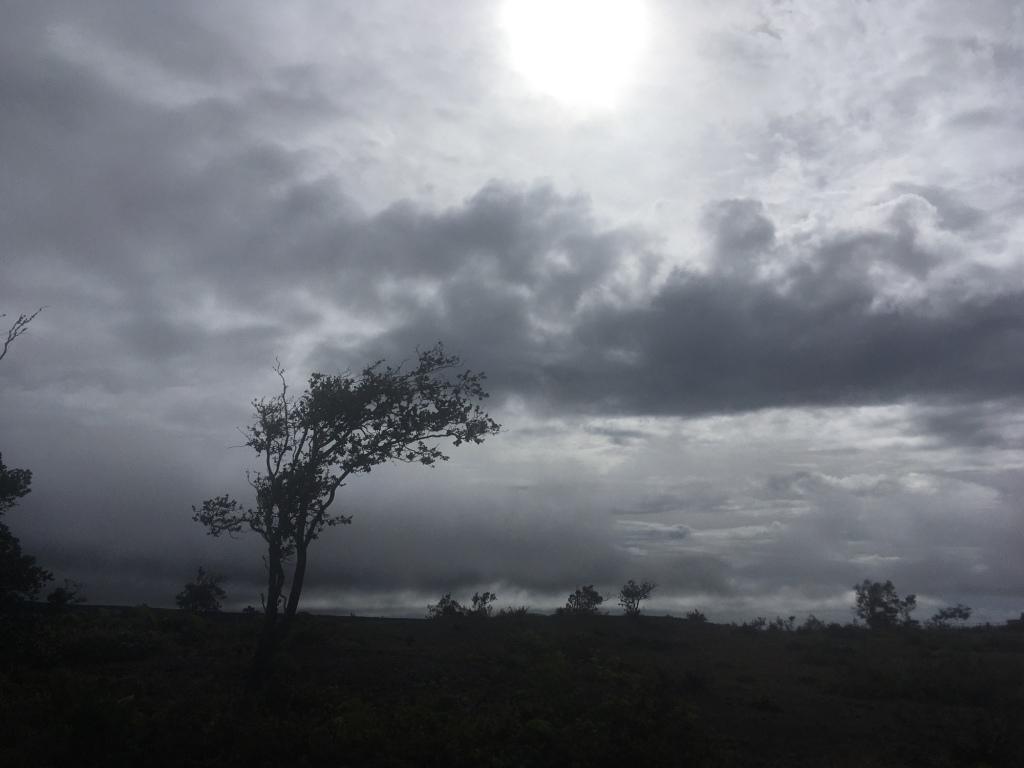 Changing Down, Halema'uma'u Lava Lake, Kilauea Crater, Hawai'i