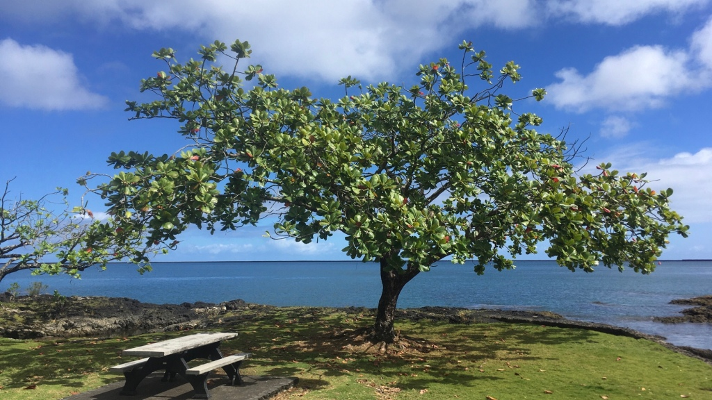 Hilo Bay, Hawaii